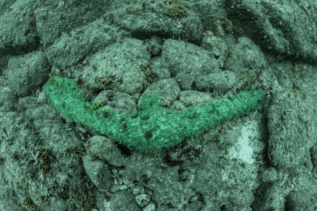 Arms of an iron anchor sitting on a boulder-strewn seabed