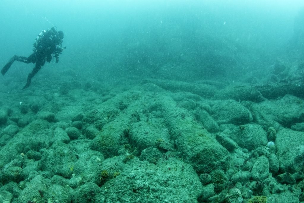 Iron cannon sitting on a rocky seabed. A diver swims above in the top left corner of the picture