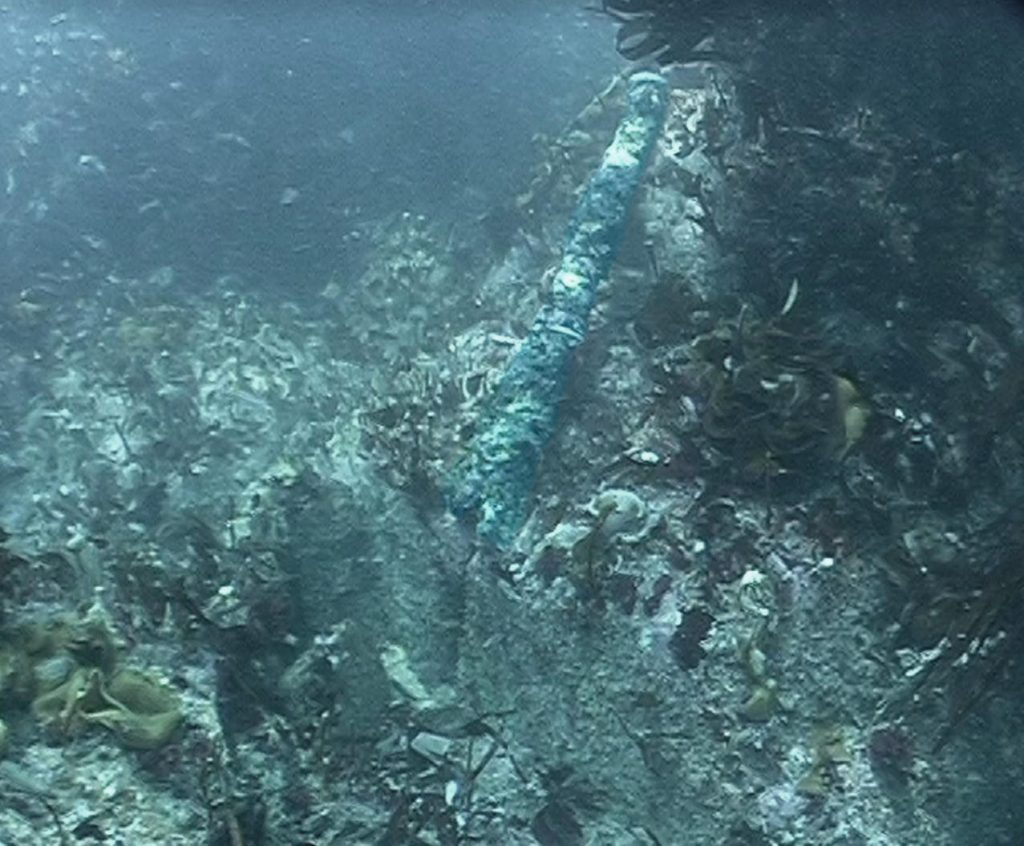 Wrought iron tube gun on the seabed