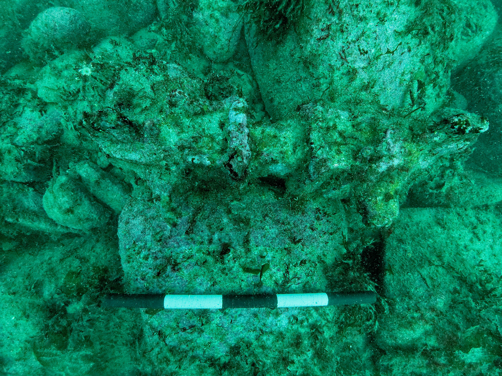 Underwater photograph of one of the possible wrought iron windlasses (O3) found on the seabed to the south of the cargo mound. The scale is 0.5m long and it is hard to see because of the green hue of the water.