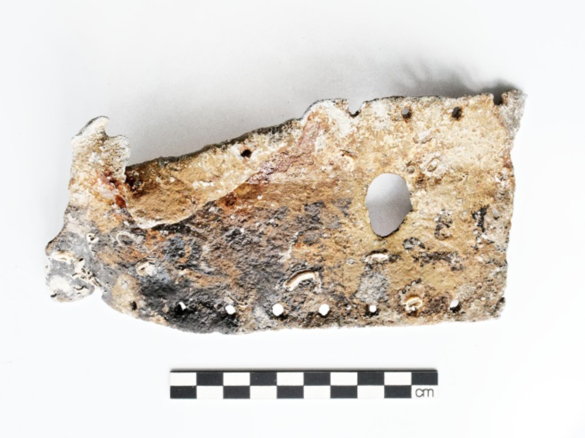 Photo of a fragment of sheet lead (F28) with nail holes around its edges suggesting that this is lead sheathing. The fragment is brown and grey in colour, with a larger hole towards the right hand side. A centimetre scale of 10cm indicates an approximate width of 17cm.